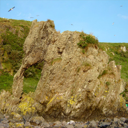 Elephant shaped rock, Hestan Island in the Solway Firth