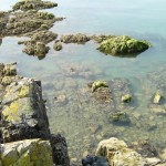 Rocky Foreshore in Hestan Island
